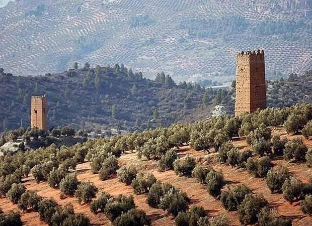 La Ruta del Aceite, en Jaén