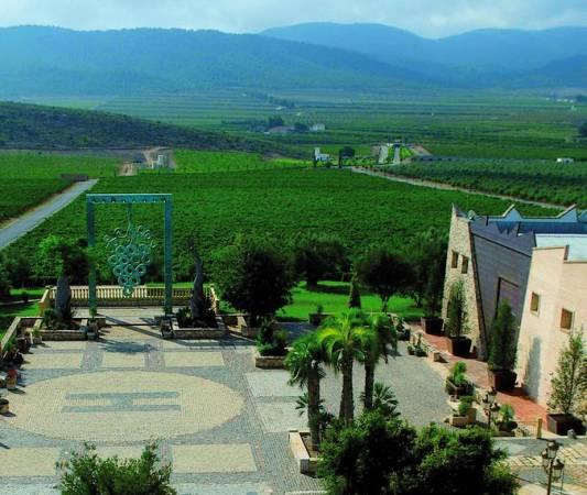 La Ruta de los Vinos de Alicante