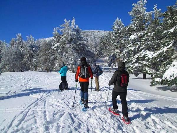 ¿Te apetece una ruta con raquetas de nieve?