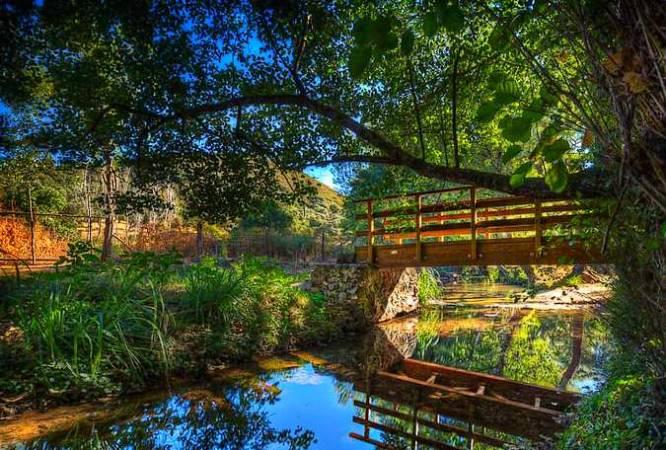 Bosque de las Letras, en Santa Ana la Real