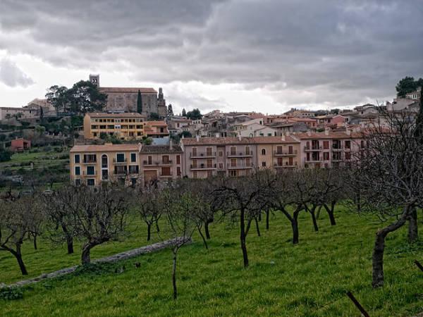 Selva, pura naturaleza en el interior de la isla de Mallorca