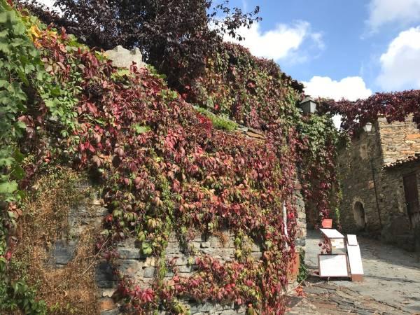 Tres lugares con encanto para disfrutar el otoño