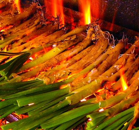 Calçots, tradición gastronómica de Fonells de la Selva