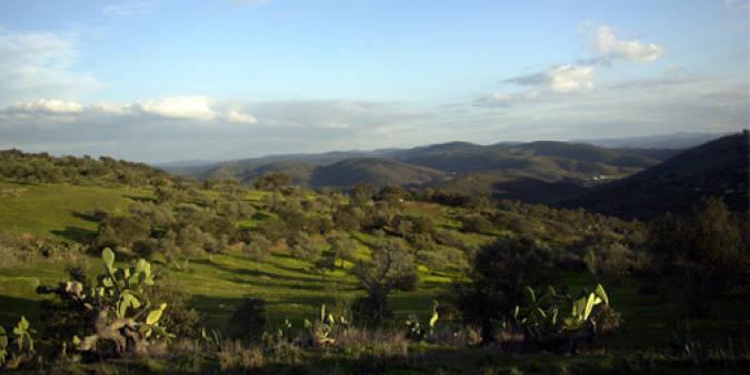 Parque Natural de la Sierra de Aracena y Picos de Aroche, en Huelva