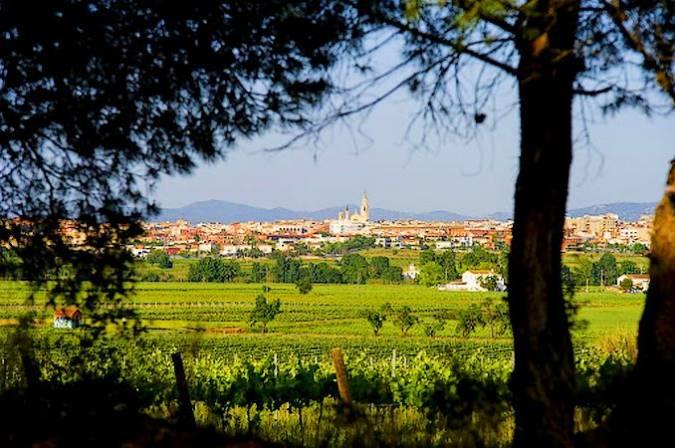 Villafranca del Penedés, destino catalán para los amantes del vino