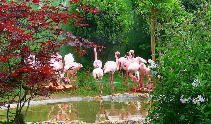 El Zoo de Santillana del Mar, en Cantabria